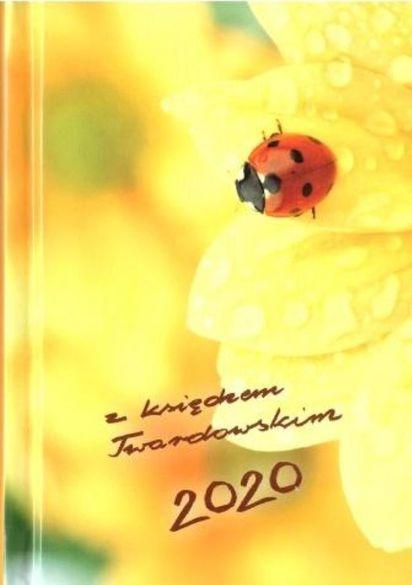 Kalendarz Z Ks Twardowskim 2020 Biedronka Smykcom